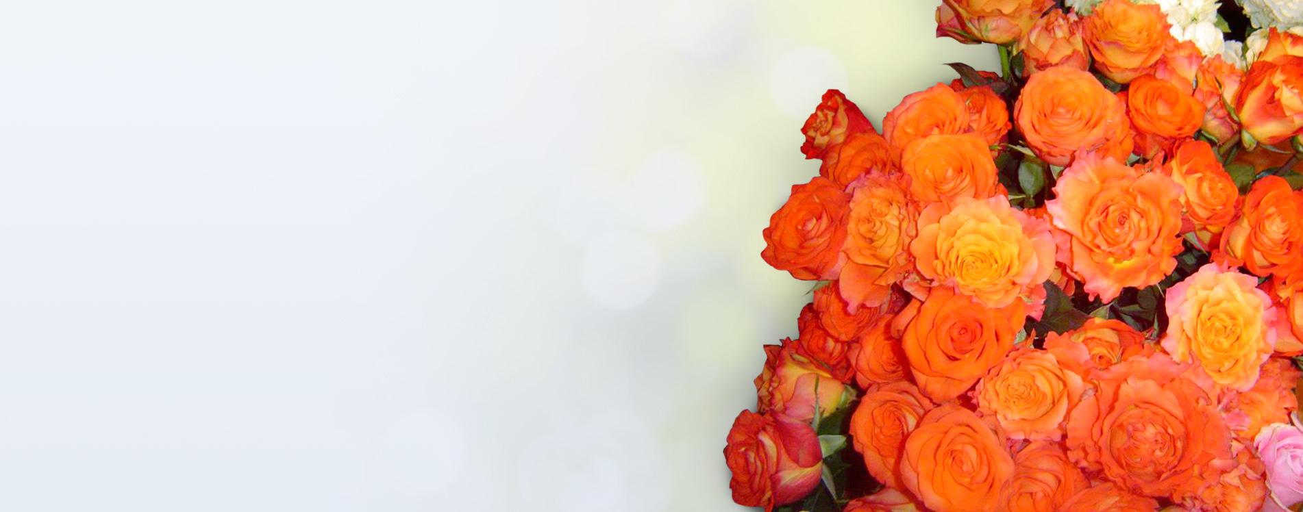 Maître-fleuriste depuis 1986